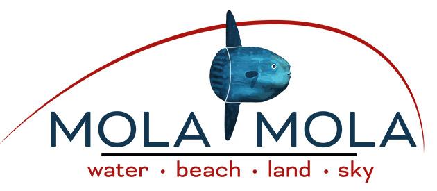 MOLA MOLA SAFARIS