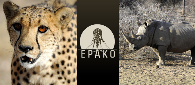 EPAKO Lodge